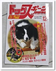 [photo13185116]dogsports.jpg